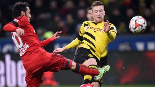 Marco Reus (rechts) und Dortmund haben die rote Laterne inne.