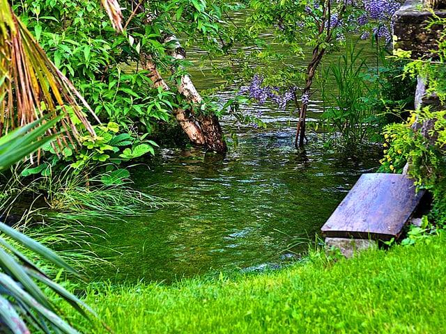 Pittoreske Überschwemmung in einem Garten.