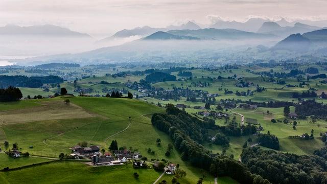 Ein Weiler zwischen grünen Wiesen und Wäldern, im Hintergrund die Alpen.