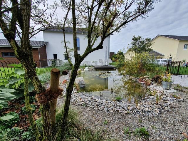 Teich in einem Garten