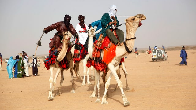 Tuareg auf Kamelen reitend