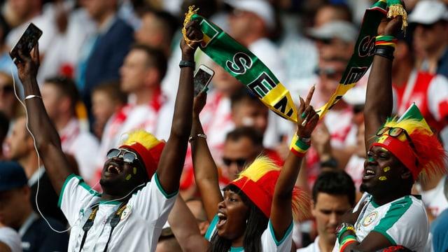 Senegalesiche Fans im Stadion singen und tanzen.