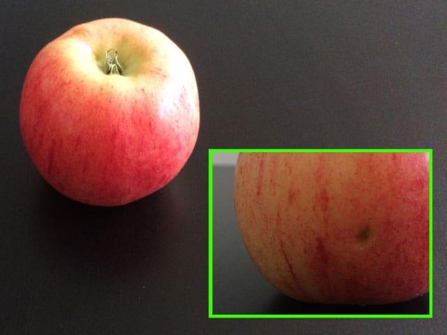 Apfel mit Makel.