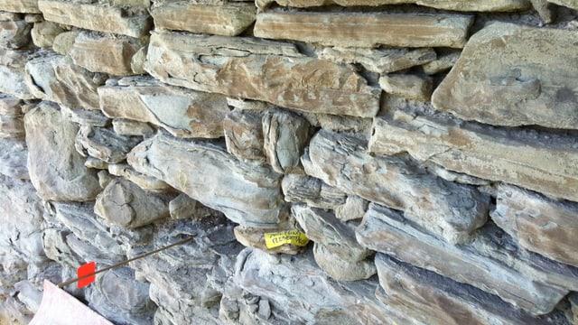 Blick auf die verwitterte Mauer des Pulverturms.