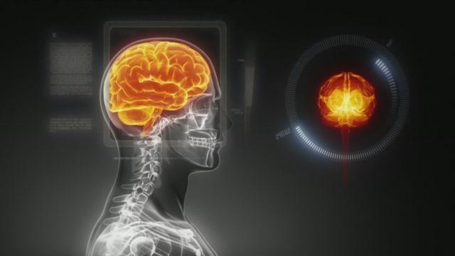 Video «Das Bewusstsein: Was Menschen zu Individuen macht» abspielen
