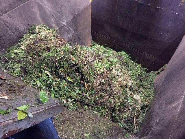 Kompost in einer Mulde.