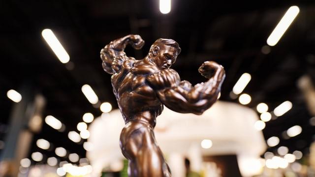 Bodybuilder-Pokal