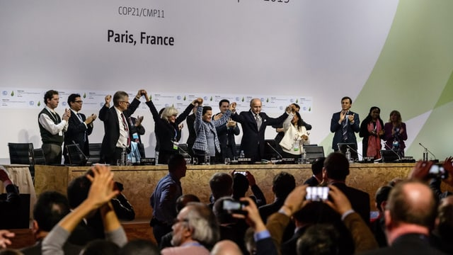 Jubel in Paris nach dem politischen Durchbruch beim Klimaabkommen im Dezember 2015.