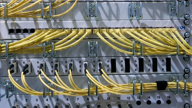 Kabelgewirr an einem Computer-Server.