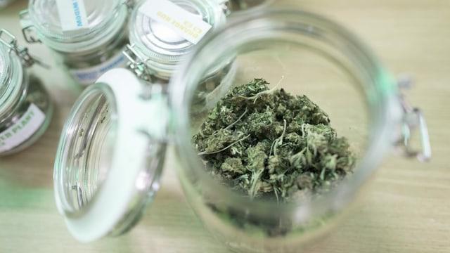 Glasdose mit CBD-Cannabis