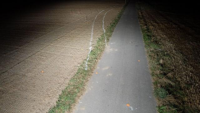 Schmaler Weg bei Dunkelheit. Links führt eine Autospur vom Weg ab, auf ein Feld.