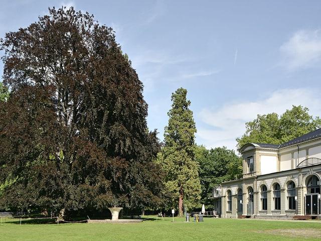 Il parc da cura a Baden.