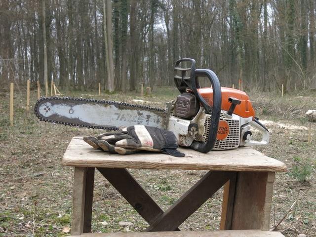 Säge, liegt auf einem Tisch im Wald.