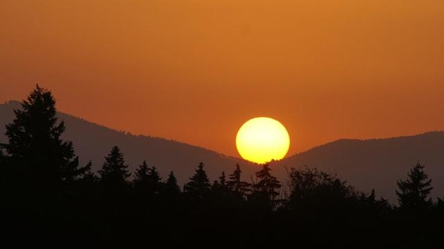 Sonnenaufgang bei Iffwil.