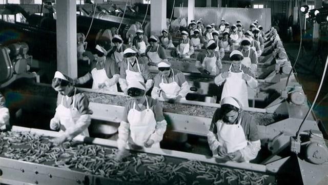 Frauen arbeiten in einer Fabrik