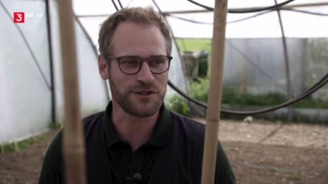 Ein Mann mit Brille in einem Gewächshaus