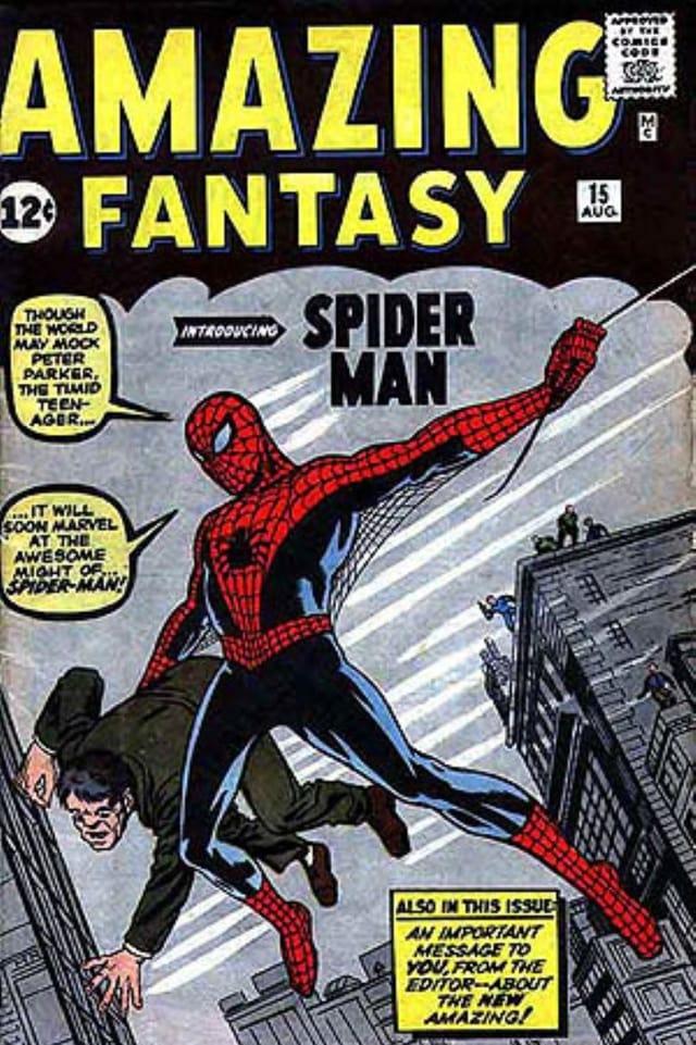 Cover des ersten Spider-Man Comics