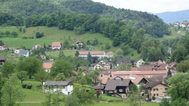 Schönes Dorf im Grünen. Auf dem Bild sind mehrere Häuser. Im Hintergrund ist der Wald sichtbar.