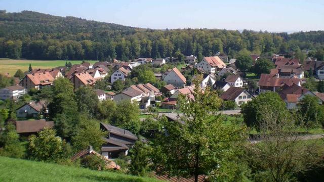 Das Dorf Riniken.