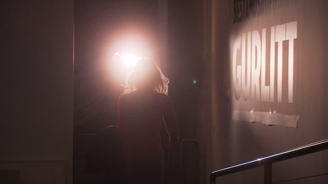 Video «Der Fall Gurlitt - ein Krimi über Kunst, Recht und Moral» abspielen