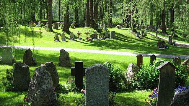 Mehrere Grabsteine in einer Waldlichtung bei Sonnenschein.