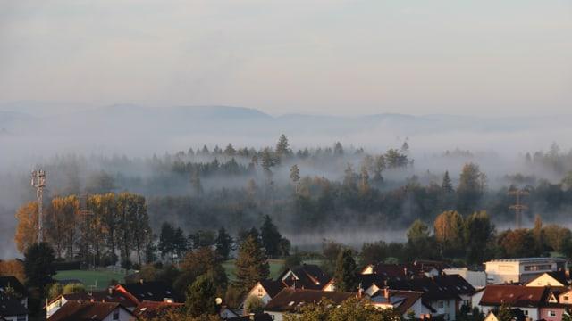 Nebelschwaden umgarnen Bäume und Häuser.