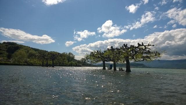 Nach den heftigen Niederschlägen von anfangs Monat war die Uferpromenade in Lüscherz auch noch am 6. Mai unter Wasser.