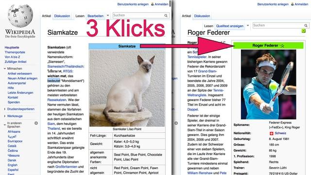 Zwei Wikipedia-Artikel in einem Browser-Fenster