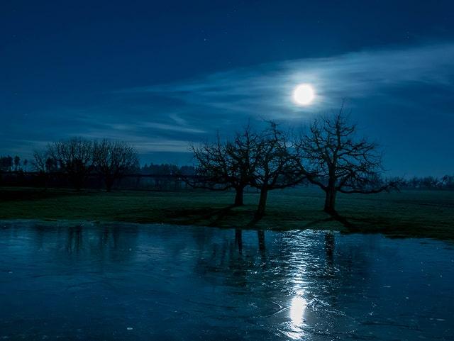 Nacht, nur der Mond scheint, aber sehr hell. Zu sehen ist eine Natureisfläche, dahinter Bäume.