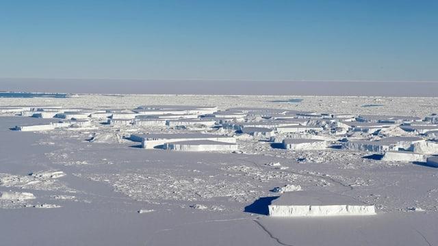 Purtret d'ina cuntrada plain glatsch en l'Antarctica.