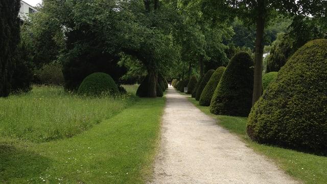 Friedhofpark