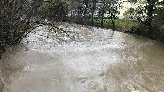 Fluss mit viel braunem Wasser.