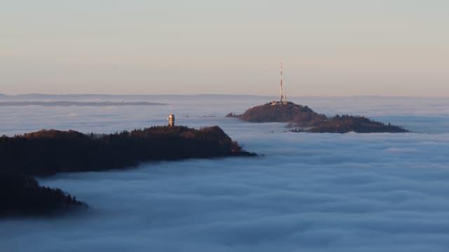 Nebelmeer, aus dem nur die Spitze des Uetliberges und des Albis herausragen.
