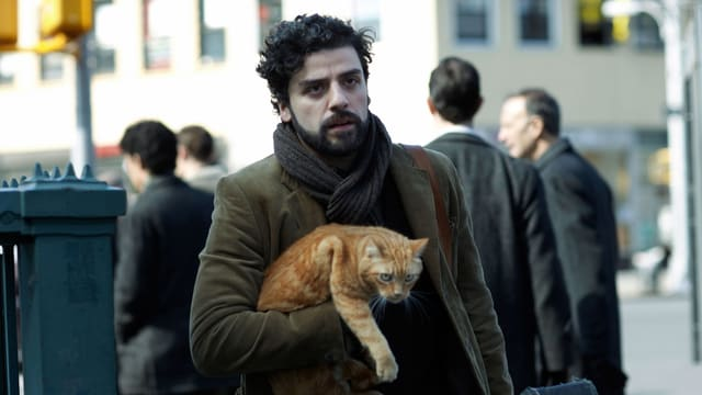 Ein Mann auf der Strasse, eine rot-gestreifte Katze im Arm tragend, in der anderen Hand der Gitarrenkoffer.