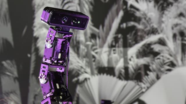 Ein Roboterarm mit einer Kamera an seinem Ende.