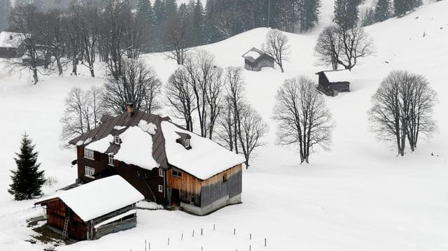 Ina chasa dasper ina stalla en il chantun Appenzell.