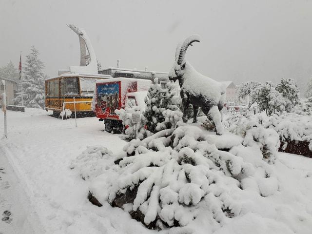 Schnee auf einer Steinbock-Skulptur