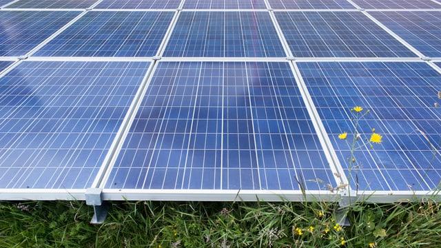 Ein Solarpanel