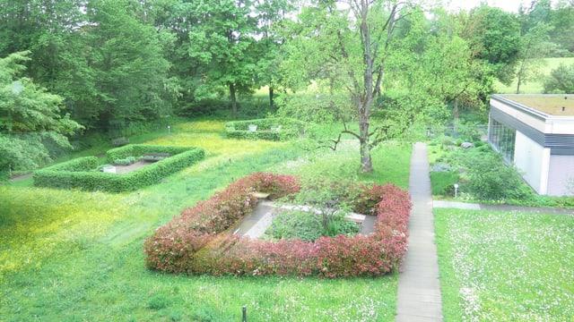 Ein Garten mit verschiedenen Hecken.