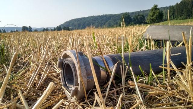 Ein Schlauch auf einem Feld