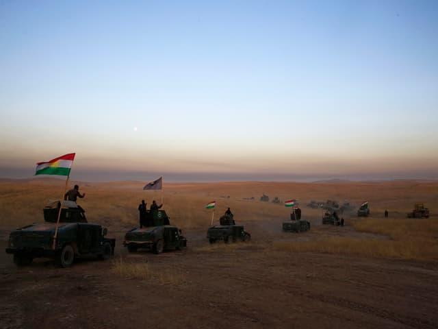 Militärfahrzeuge fahren durch irakische Wüste.
