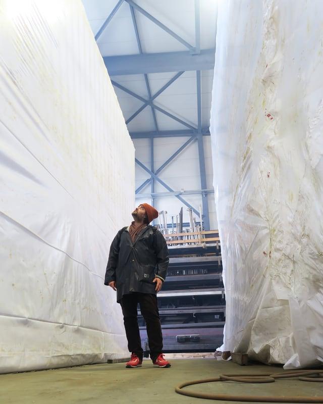 Ein Mann steht zwischen zwei grossen Plastikgebilden.