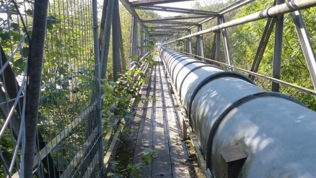 Blick auf Brücke mit Rohr.