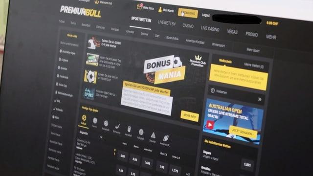 Premium Bull Website