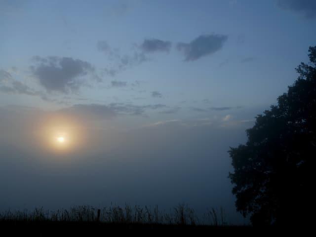 Ein dickes, graues Band liegt in der unteren Bildhälfte. Hinter dem Nebel geht die Sonne auf.