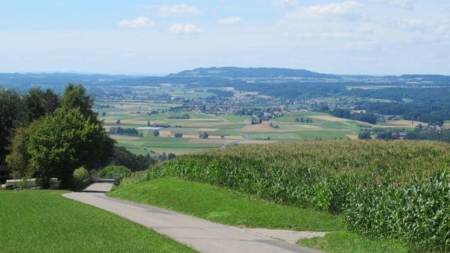 Hügel mit gründer Wiese mit Blick auf einen Weiler.