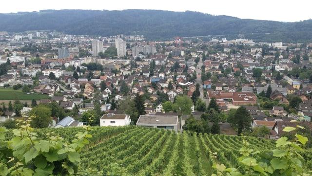 Blick von oben auf Wettingen, im Vordergrund Weinreben