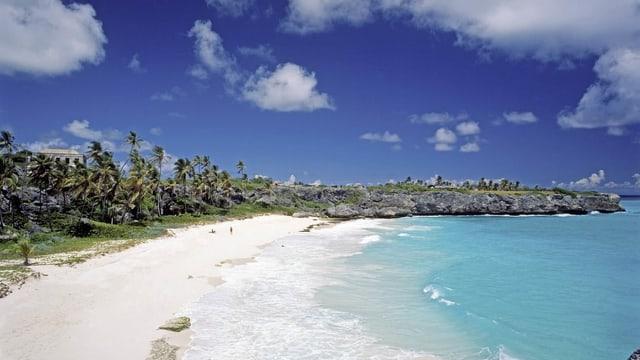 Ein Strand auf Barbados.