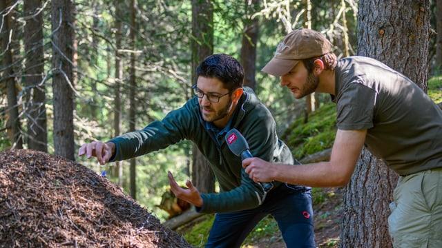 Zwei Männer vor einem Ameisenhaufen.