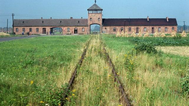 Bahngleis, das zum Konzentrationslager Auschwitz führt, das langsam von Gras überwachsen wird.